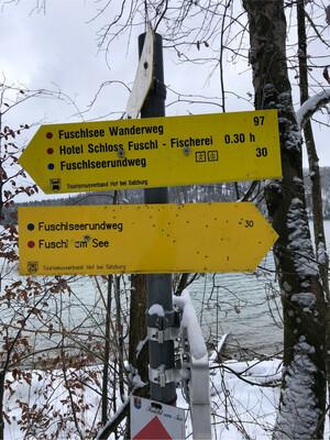 Wanderung Fuschlsee Rundwanderweg Bild 6