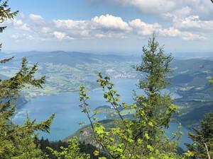 Wanderung Schafberg Bild 2