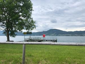 Badeplatz Seezugang Alexenau Bild 2