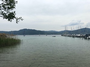 Badeplatz Seezugang Attersee Bild 3