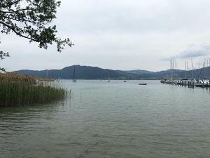 Badeplatz Seezugang Attersee Bild 5