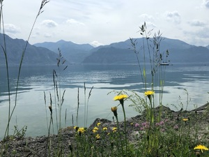 Badeplatz Seezugang Misling Bild 4