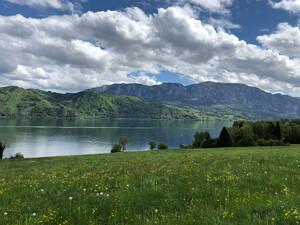 Wanderung Westwanderweg Zell-Buchenort Bild 4