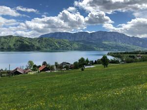 Wanderung Westwanderweg Zell-Buchenort Bild 3